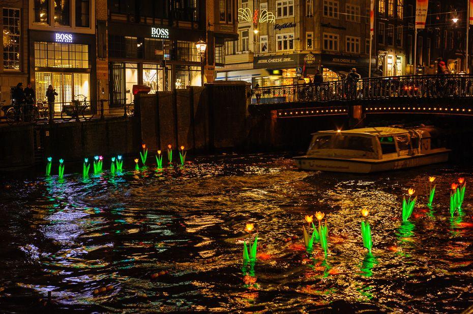 CC Proof cliënt ontwierp deze tulpen voor het Amsterdam Light Festival.